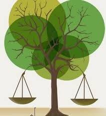 Maestría en Derecho Ambiental 2da. Cohorte